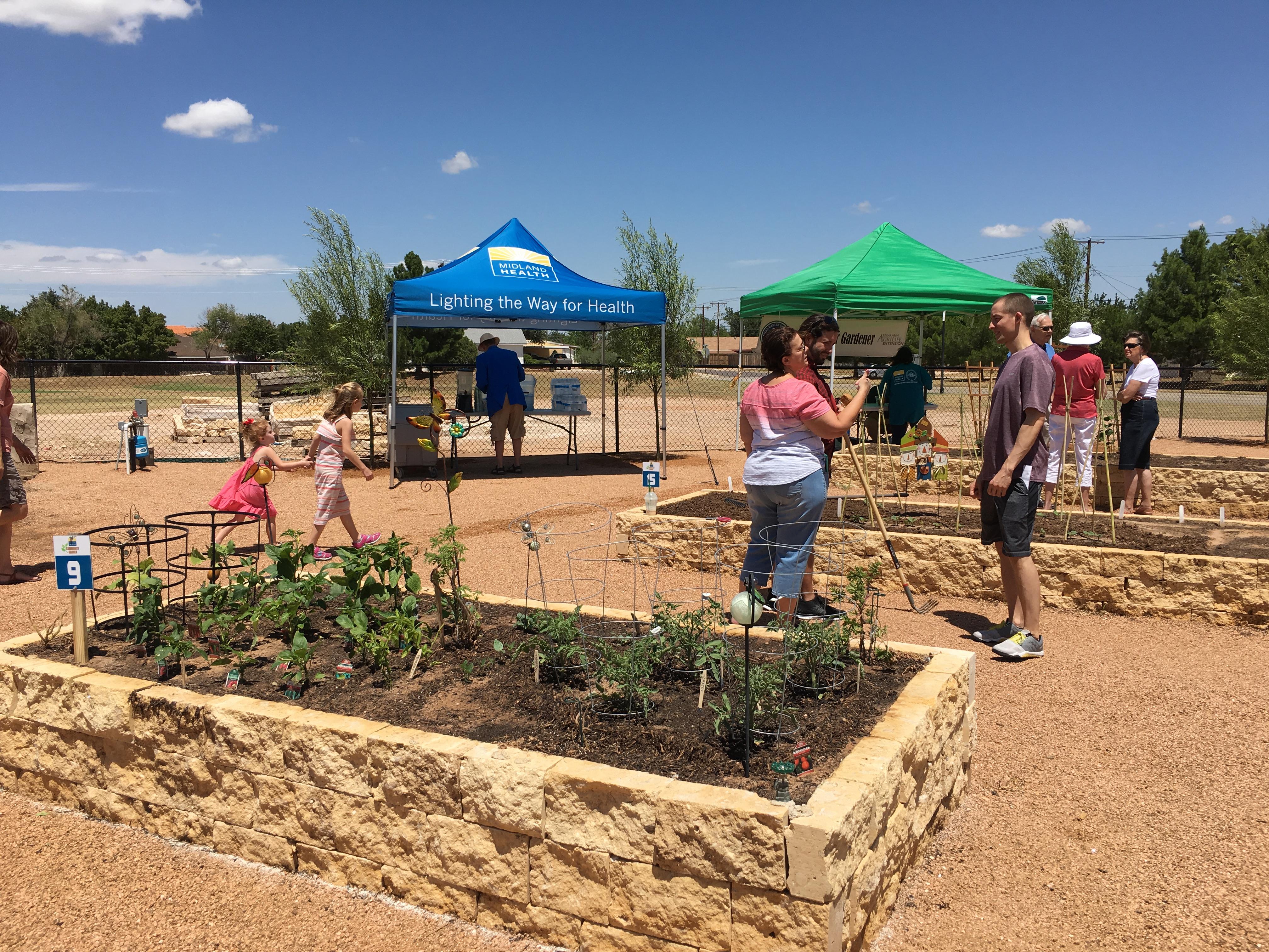 Community Garden | Midland Health