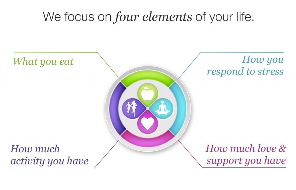 Ornish Lifestyle Medicine Four Elements